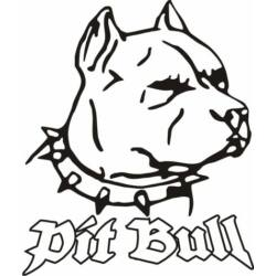 Pit Bull, 58 x 68 cm