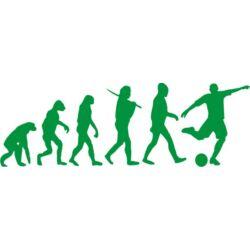 Falmatrica, faltetoválás - Foci evolúció, 90 x 30 cm
